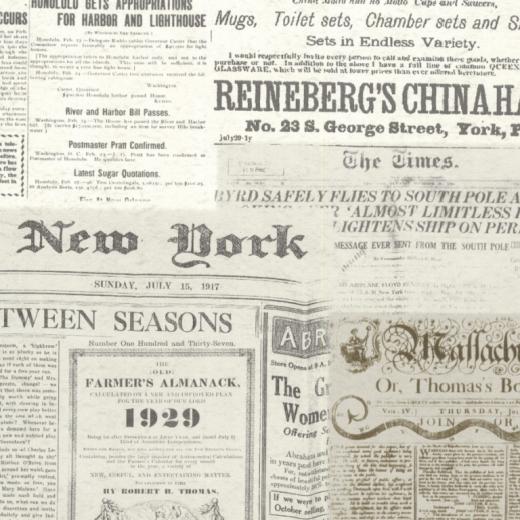 Newspaper - Print - American News - 21267 - Adverts ...