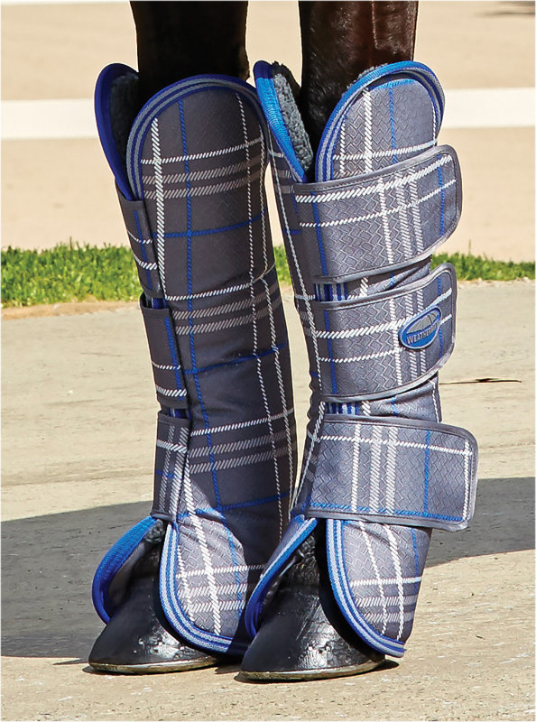 Weatherbeeta Wide Tab Long Horse Travel Stiefel Stiefel Stiefel - Grau Plaid e00aa3