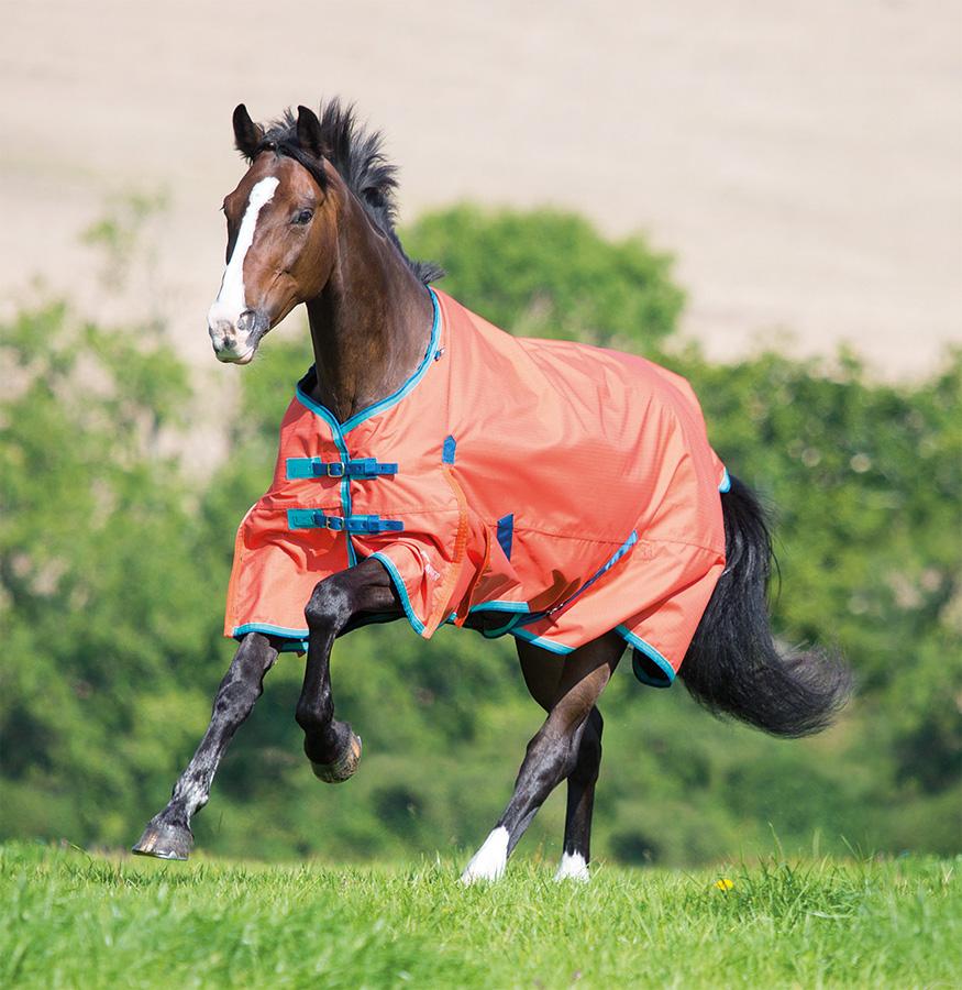 Shires Highlander Original Lite Pony/Horse Turnout Turnout Turnout Rug - Orange/Aqua/Teal 53291d