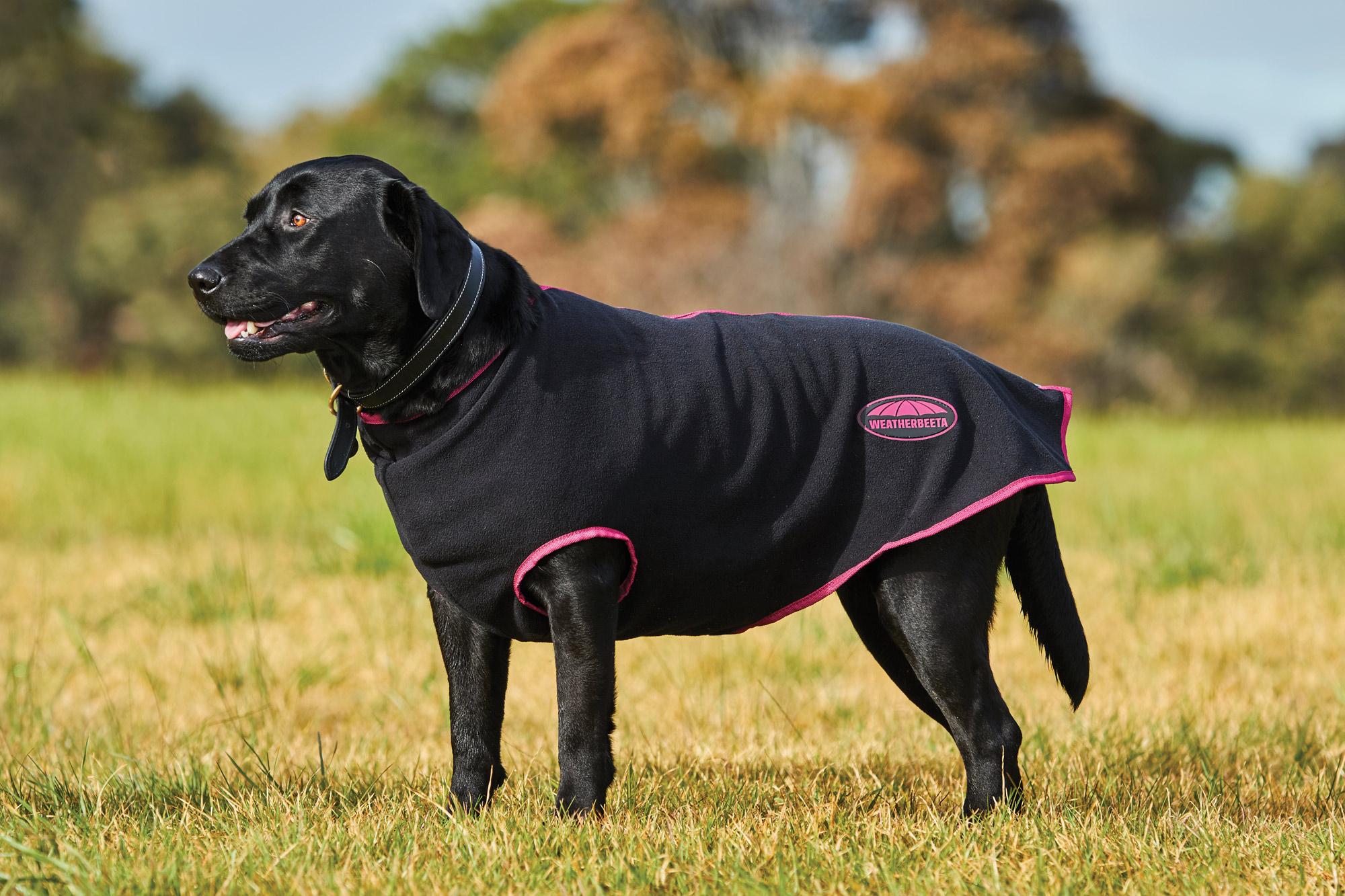 Weatherbeeta Fleece Zip Dog Coat Black Boysenberry Ebay