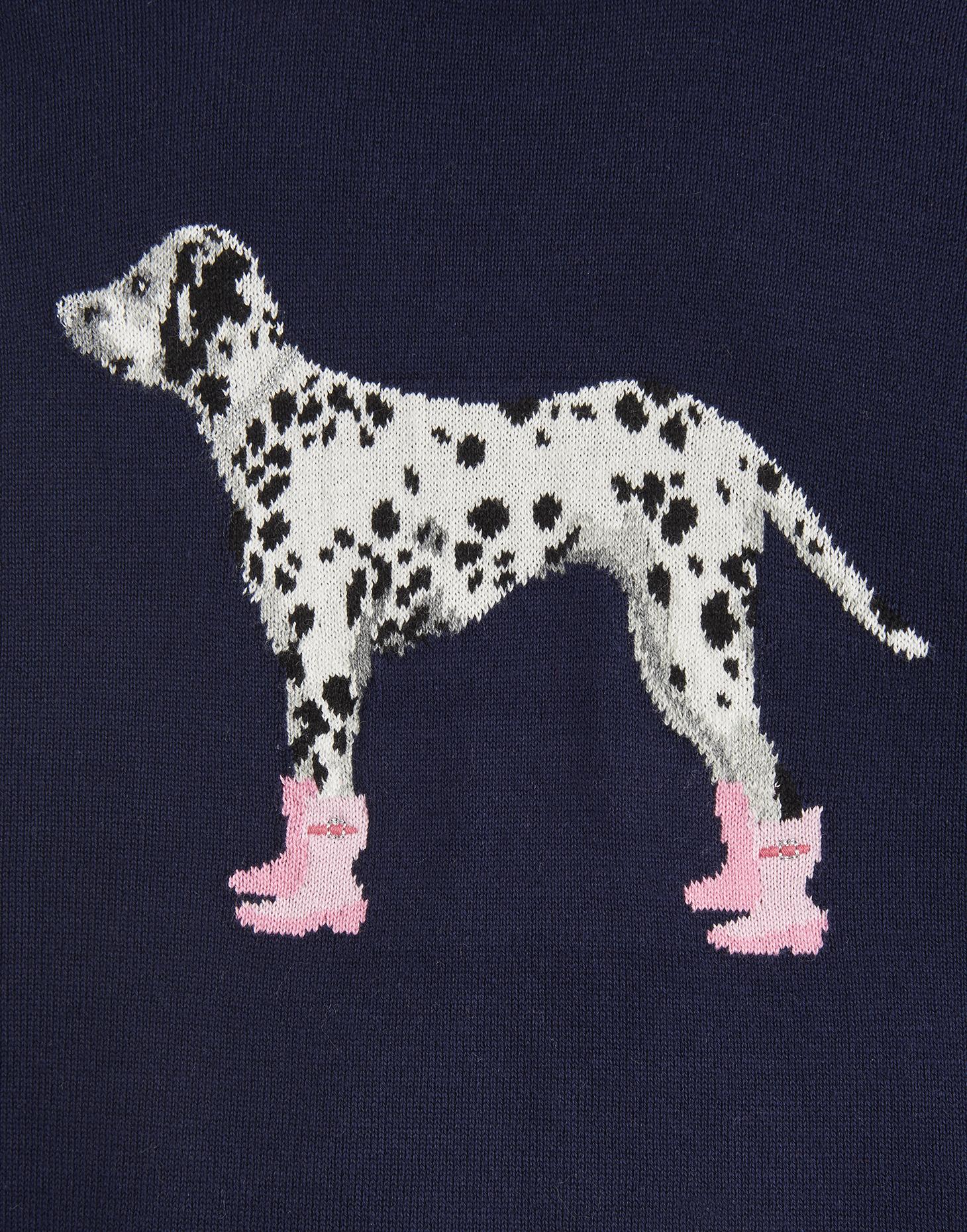 Dalmation Joules Junior Artwork Meryl Jumper