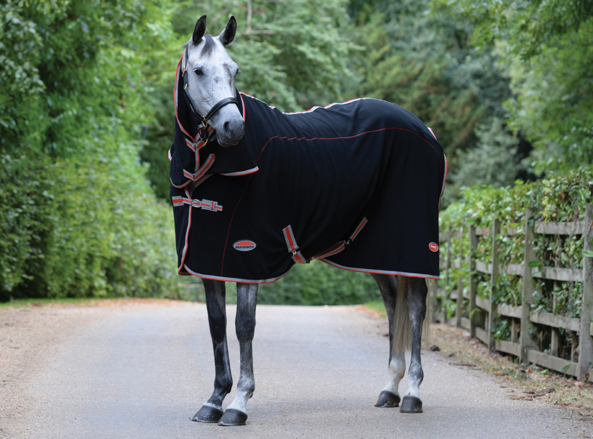 Black//Silver//Red Weatherbeeta Therapy-Tec Combo Neck Rug