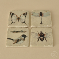 Bird and insect coasters set of 4