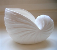 Shoeless Joe Nautilus Shell Votive